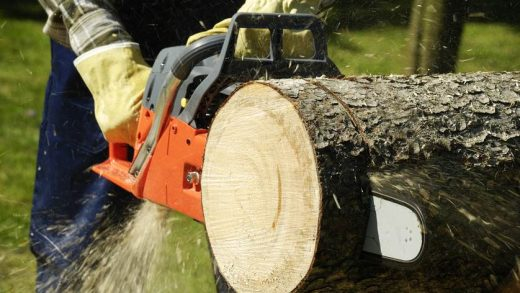 What Are the Advantages of Using an Electric Chainsaw