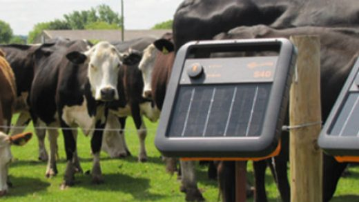 electric fence energizer featured
