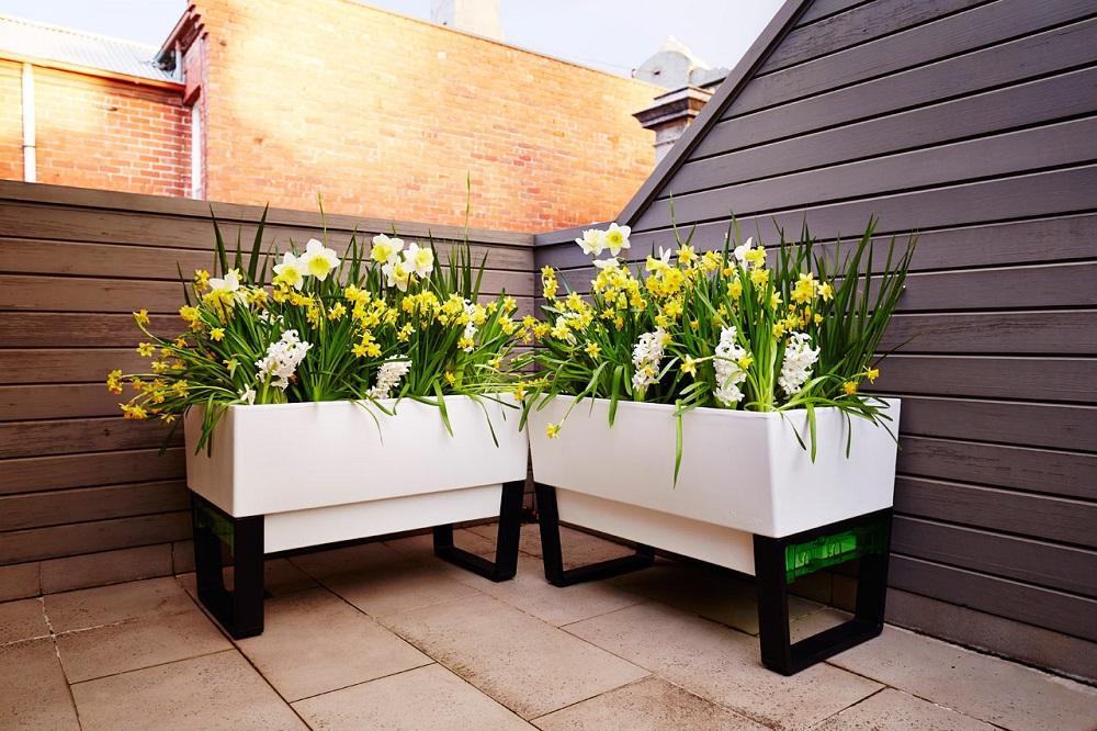 self-watering-planter