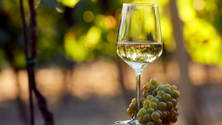 Preservative-Free White Wine