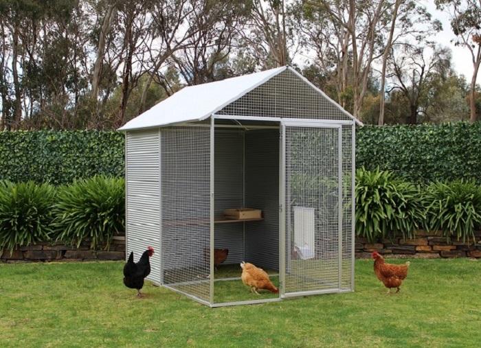 small steel chicken coop
